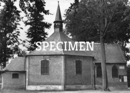 Kapel OLV Van 7 Weeën - Heidekapel - Waasmunster - Waasmunster