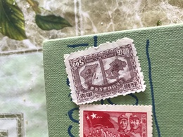 CINA CARTA GEOGRAFICA 1 VALORE - Stamps