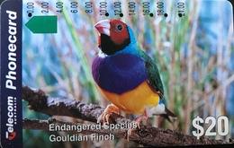 AUSTRALIE  -  Telstra Phonecard  - Endangered Species  -  Gouldian Finch  -  $ 20 - Australië