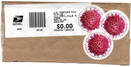 USA 2020, Used, Chrysant Flower - Etats-Unis