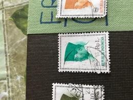 INDONESIA IL SULTANO Verde 1 VALORE - Stamps