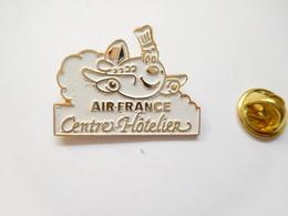 Beau Pin's En Relief , Aviation Avion , Compagnie Air France , Centre Hôtelier - Luftfahrt