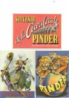 5 Cartes Cirque Pinder - Cartes Postales