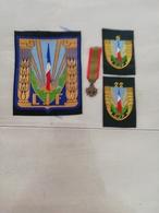 17371  MILITARIA LOT INSIGNES TISSUS ET  REDUCTION DECORATION - Medals
