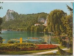 BLED SLOVENIA CANOTTAGGIO LAGO  SPORT FORMATO GRANDE VIAGGIATA 1967 - Slovenia