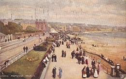 """Harris Promenade. Douglas"" Tuck Oilette Postcaard # 1455 - Tuck, Raphael"