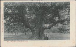 The Major Oak, Sherwood Forest, Nottinghamshire, 1904 - Linney's Postcard - England