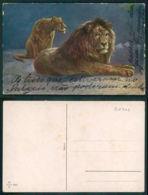 OF [ 20706 ] -  ILLUSTRATEUR - LION LEON - Lions