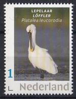 Nederland - Beurspostzegel 2019 - Lepelaar - MNH - Storks & Long-legged Wading Birds