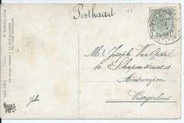 Fantasiekaart  Met OCB 81 - Afstempeling VIVEGNIES - COBA 60 - 1893-1907 Wappen