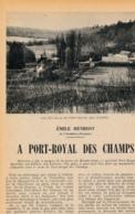 1954 : Document, PORT-ROYAL-DES-CHAMPS (Yvelines), Vue Actuelle, En 1709, Soubassementd De L'église Détruite, Pigeonnier - Collections