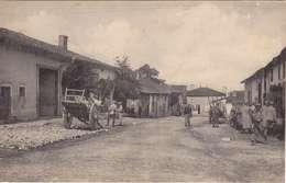 55 - DOMBASLE-EN-ARGONNE - France