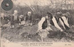 29 - COUTUMES, MOEURS ET COSTUMES BRETONS   Arrachage Des Pommes De Terre Nouvelles - People