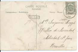 Fantasiekaart  Met OCB 81- Afstempeling STAVELOT - Lijnstempel HOCKAI - 1893-1907 Wappen