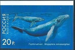 B7439 Russia Rossija Fauna Marine Life Whale Colour Proof - Balene