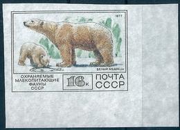 B7480 Russia USSR 1977 Fauna Polar Animal Mammal Colour Proof - Arctic Wildlife