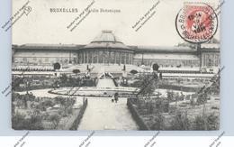 B 1000 BRUSSEL, Jardin Botanique, 1911 - Bossen, Parken, Tuinen