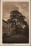 AK/CP Gut Geglenfelde  Loosen  Schlochau    Gel/circ. 1942   Erhaltung/Cond. 2- , Kleiner Einriss Unten  Nr. 01065 - Westpreussen