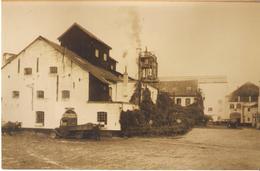 SINT-TRUIDEN - Oude Foto - Suikerfabriek Mellaerts - 10 X 15 Cm - Sint-Truiden