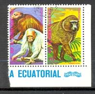 Timbre Oblitéré - Guinée Equatoriale / Guinéa - Singes  / Monkeys - Coin De Planche - Paire Mono Calvo, Chacma - (1) - Equatoriaal Guinea