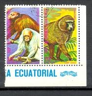 Timbre Oblitéré - Guinée Equatoriale / Guinéa - Singes  / Monkeys - Coin De Planche - Paire Mono Calvo, Chacma - (2) - Equatoriaal Guinea