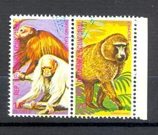 Timbre Oblitéré - Guinée Equatoriale / Guinéa - Singes  / Monkeys - Paire - Mono Calvo, Chacma - (3) - Equatoriaal Guinea