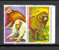Timbre Oblitéré - Guinée Equatoriale / Guinéa - Singes  / Monkeys - Paire - Mono Calvo, Chacma - (5) - Equatoriaal Guinea
