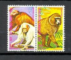 Timbre Oblitéré - Guinée Equatoriale / Guinéa - Singes  / Monkeys - Paire - Mono Calvo, Chacma - (6) - Equatoriaal Guinea