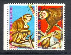 Timbre Oblitéré - Guinée Equatoriale / Guinéa - Singes  / Monkeys - Paire - Rhesus, Macaco Caras Roja Y Blanca - (11) - Equatoriaal Guinea