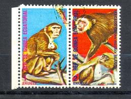 Timbre Oblitéré - Guinée Equatoriale / Guinéa - Singes  / Monkeys - Paire - Rhesus, Macaco Caras Roja Y Blanca - (12) - Equatoriaal Guinea