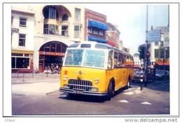 Postauto, Car Postal Suisse, Zwitserse Postauto, Autobus, FBW; Utrecht. SEHR SELTEN! - Autobus & Pullman