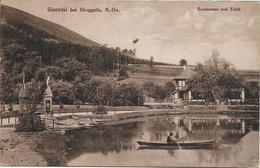 1920 - SIERNTAL  Bei   GLOGGNITZ ., Gute Zustand, 2 Scan - Neunkirchen