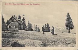 1912 - KAMPSTEINER-SCHWABIG,  Schneeberg, Gute Zustand, 2 Scan - Neunkirchen
