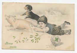 Vienne.petit Garçon,cochon,petit Chien Teckel.1909 - Chiens