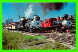 TRAINS - KLONDIKE CASEY & CHIEF CRAZY HORSE PAUSE AT HILL CITY TERMINUS, DAKOTA - DAN GRIGG ENTERPRISES CO - - Trains