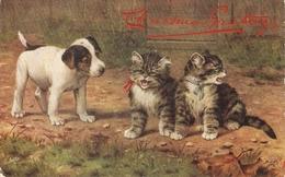 """B.Cobbe. When Cats Are Kittens"" Tuck Oilette Postcard # 9538 - Tuck, Raphael"
