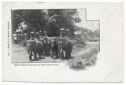 Wild Elephant Escorted By Three Tamed Ones_Siam Thailand _UNC_n°615 Photo By J Antonio, Bangkok_Vintage CPA_Elephants - Thailand