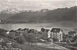 Suisse - MONTREUX - Chernex - VD Vaud