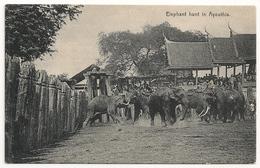 Elephant Hunt In Ayouthia 1900's Ayouthia Elephants_Siam Thailand_Old Vintage CPA SUP - Thailand