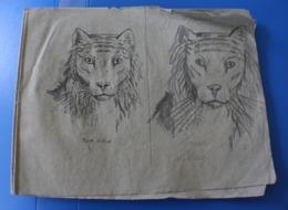 1870 TRÈS ANCIEN CAHIER DE DESSIN MODÈLES A DESSINER-TIGRE-SINGE-BICHE-OURS-RHINO-CHAMOIS-CHEVREUIL-LOUP-GIRAFE-LION-CER - Drawings