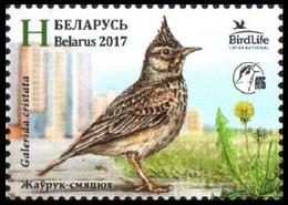 456 - Belarus - 2017 - Bird Of The Year Crested Lark - 1v - MNH - Lemberg-Zp - Belarus