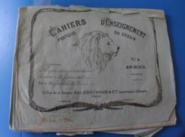 1875 TRÈS ANCIEN CAHIER DE DESSIN MODÈLES A DESSINER-TIGRE-SINGE-BICHE-OURS-RHINO-CHAMOIS-CHEVREUIL-LOUP-GIRAFE-LION-CER - Drawings