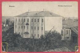 Slonim = Stonim Mädchen Gymnasium : Biélorussia - Russia - Belarus /  Stempel Feldpost Landwehr Forbach Krieg 1914-18 - Poland