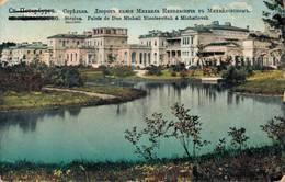 St Petersburg Strelna Palais De Duc Michail Nicolaevitch A Michailovsk 1917 - Russia