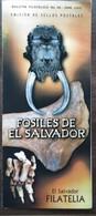 2004 SALVADOR - Fossils - Fossils
