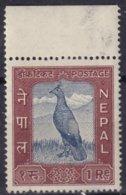 NEPAL - 1 R. Oiseau - Nepal