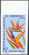 CAMEROUN (1967) Bird-of-paradise Flower. Imperforate. Scott No 469, Yvert 422a. - Cameroon (1960-...)