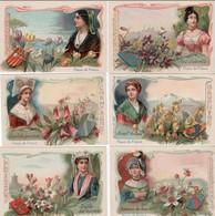 6chromos Depuratif Bleu - Trade Cards