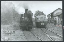 Photo - Tramways De Corrèze (T.C.) - Mai 1958 (1er Voyage) - Train Du F.A.C.S. - Loco 030 N°3 & Autorail Billard - Trains