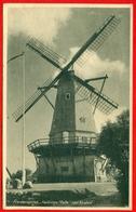 """Fredsmindet """"Kettinge Mølle"""" Ved Nysted (mill - Moulin) - Denmark"""